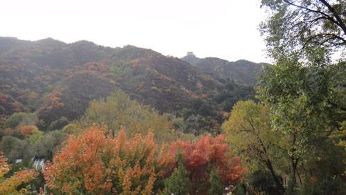 金秋十月  陵园最美时